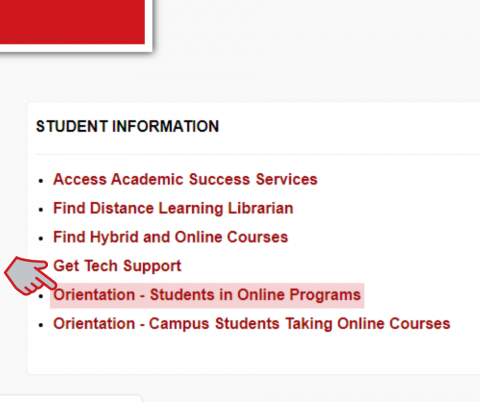 Online students can self enroll in UL Lafayette's online orientation course.