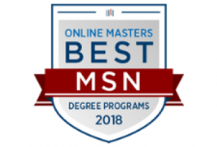 Best Online MSN Program for Flexibility